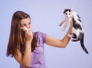 NLP allergy process