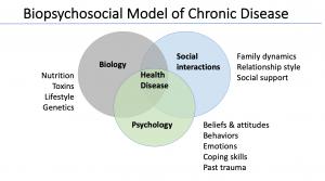 biopsychosocial disease model